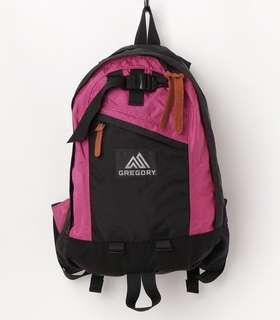 日本直送 Gregory x JOURNAL STANDARD Fine Day Backpack