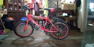 Mountain bike (mini)