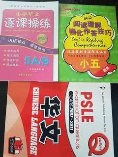 PSLE Chinese books