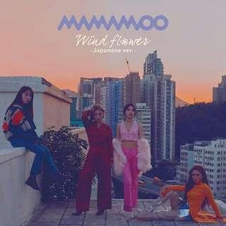 Mamamoo Wind Flower Japan