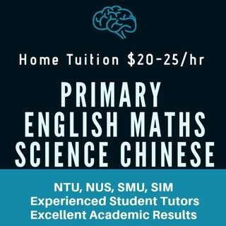 English Maths Science Chinese Tuition | Primary School Higher Chinese Tutor | Mathematics PSLE |Home Tutor | MOE Teacher | Home Tuition Teacher | Tutor needed | Private Tuition for Primary | One to One | P1 P2 P3 P4 P5 P6 | Lower Upper Primary | AEIS