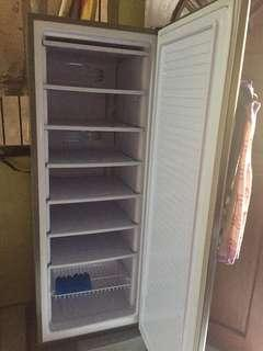 Upright Freezer (Condura)