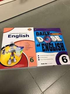 Primary 6 Chosen Set Of Books