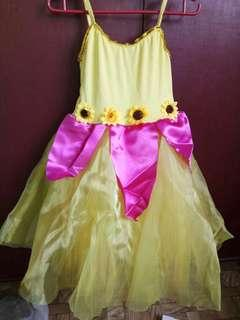 Fairy costumes or ballet costume