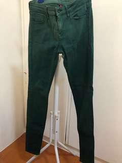 UNIQLO dark green-colored pants