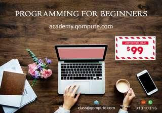 Programming for Beginners (academy.qompute.com)