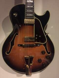 Semi Hollow Thinlines and Archtops