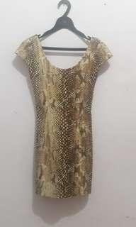 Dress Brown Snake