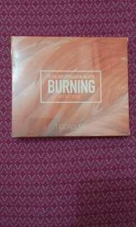 Focallure burning pallete
