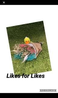 (ENDED) Likes for Likes