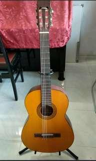 Walden Classical Guitar