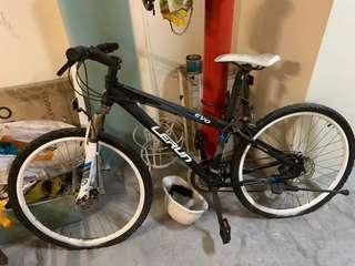 Mountain bic