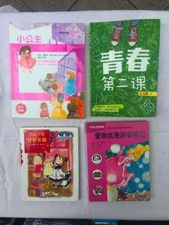 Chinese Story Books (Secondary School Level)