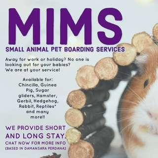Small Animal Pet Boarding Services @ RM5