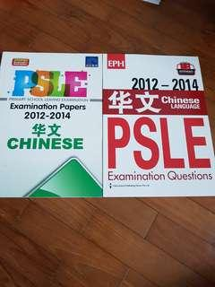 (New) PSLE Chinese Booklet