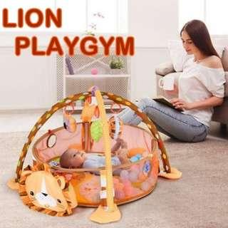 Baby Lion Playgym