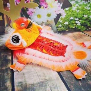 🚚 Flash Sale! CNY Dog Clothes