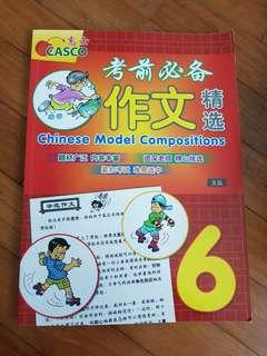 (New) P6 Chinese Composition