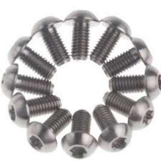🚚 Brake Disc Rotor Bolts RISK Titanium Set