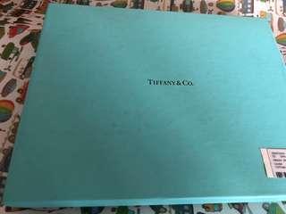Tiffany ipad套