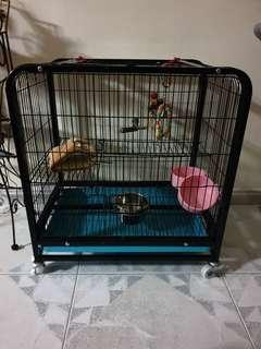 🚚 Pre-loved bird/small animal cage for sale!
