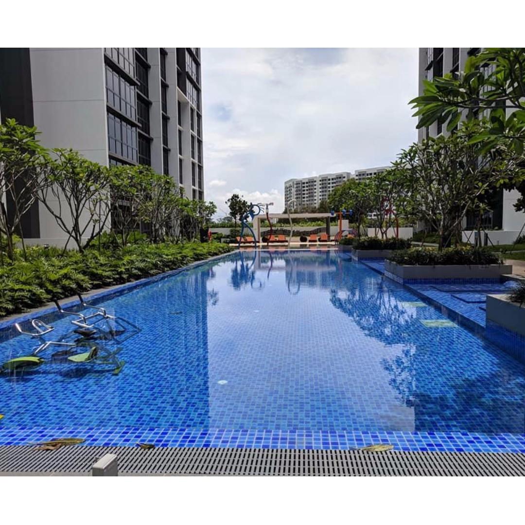 Condominium For Rent By Owner: CONDOminium-NewMasterRoom For Rent- PLEASE CALL/MSG