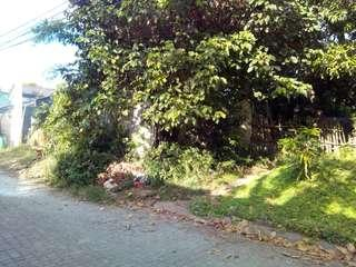Residential Lot for Sale Kingsville Subdivision Marcos Hiway right across SM City Masinag
