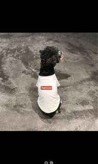 Supreme Tee for Dogs