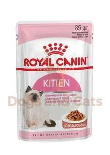 🚚 A- Kitten wet food pouch