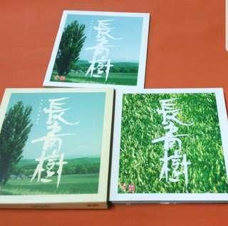 長青樹  CD 碟  2003年 IFPI 正版碟