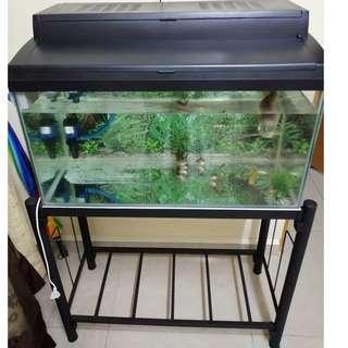 aquarium 2.5 ft