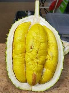 🚚 Premium Pahang Highlands Mao Shan Wang (高山老树)(猫山王) Durians Available for ordering now