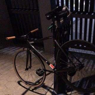 unknown type 1 full bike