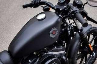 HARLEY-DAVIDSON MY19 XL883N IRON (OPEN FOR BOOKING)