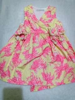 Gingersnaps dress tiny 18 euc