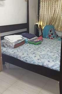 🚚 Teak Canopy King Bed Frame Selling Cheap to Clear Fast