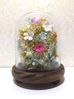 preserved flower glass dome