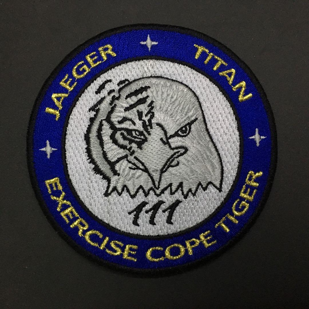 RSAF Republic of Singapore Air Force Squadron Patch