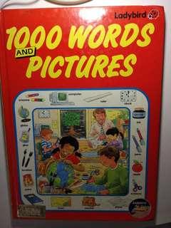 1000 Words & Pictures by Ladytbird 幼兒英文童書