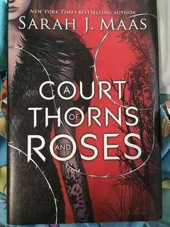 Court of thorn and roses book