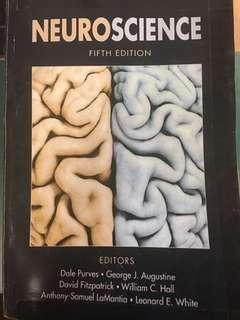 🚚 Neuroscience