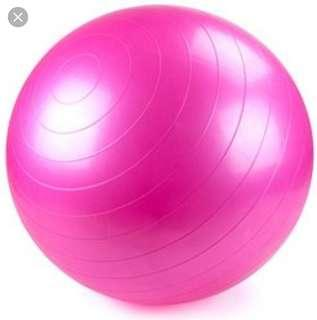 Go fit Stability Exercise ball