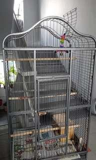 Human height bird cage