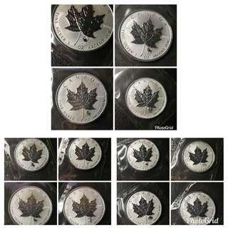 2004 精鑄加拿大楓葉銀幣星座系列一套12枚連証書