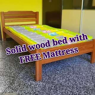 BN Solid Wood Single Bed