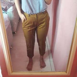 Browny Pants