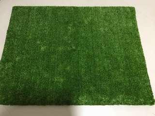 Artificial Grass Board