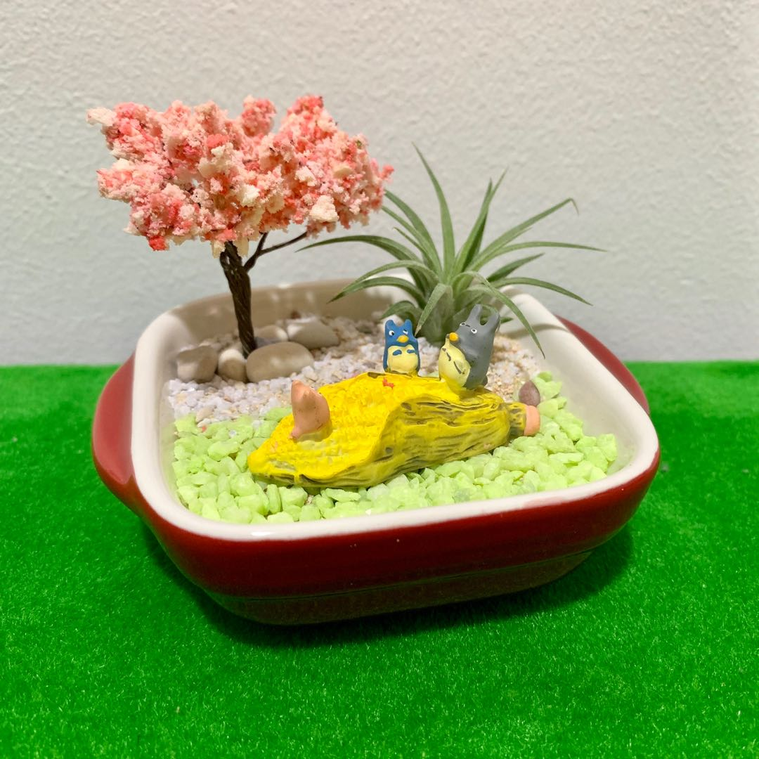 Airplant Terrarium Totoro Friends Gardening Plants On Carousell
