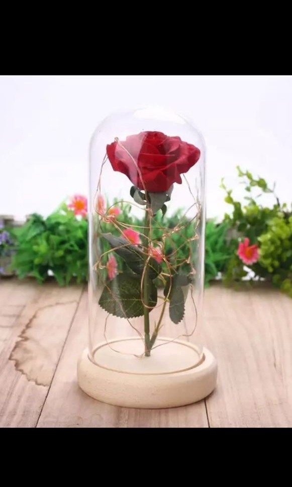 Forever Rose In Glass Dome With Led Lights And Music Gardening Flowers Bouquets On Carousell,Joanna Gaines Shiplap Bedroom