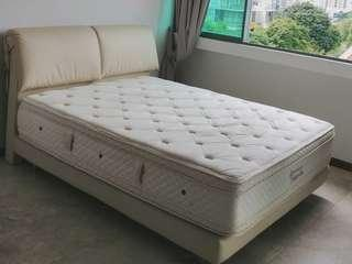 Sealy Posturepedic Polarville Queen Mattress